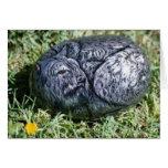 """Tarjeta de la roca del perro de """"Sheba"""""""