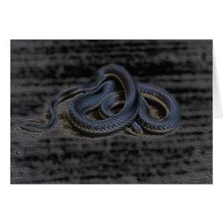 Tarjeta de la serpiente de liga