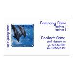 Tarjeta de la show business del delfín plantillas de tarjetas personales