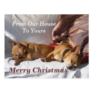 Tarjeta de la siesta del navidad postal