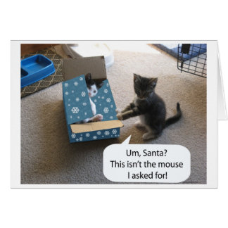 Tarjeta de la sorpresa del navidad del gatito
