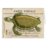 Tarjeta de la tortuga del vintage