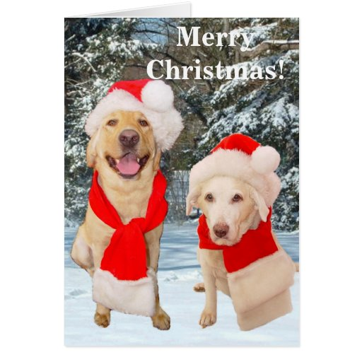 Tarjeta de las Felices Navidad