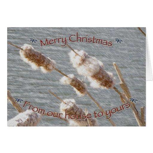 Tarjeta de las Felices Navidad de los Cattails