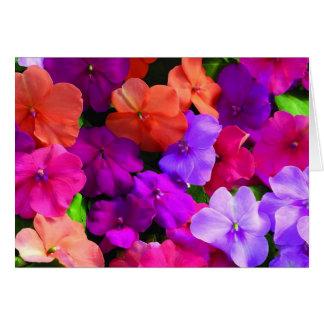 Tarjeta de las flores del multicolor - espacio en