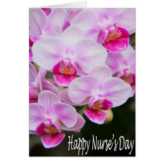Tarjeta de las orquídeas del rosa del día de la en