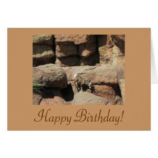 Tarjeta de las ovejas de Bighorn del feliz cumplea