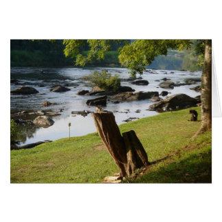 Tarjeta de las reflexiones del Riverbank (espacio