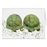Tarjeta de las tortugas del dibujo animado