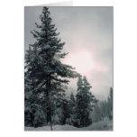 Tarjeta de los árboles de la nieve