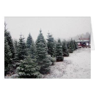 Tarjeta de los árboles de navidad