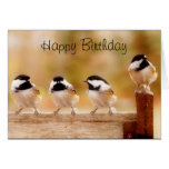 Tarjeta de los Chickadees del feliz cumpleaños