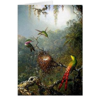 Tarjeta de los colibríes de la selva tropical