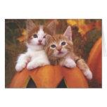 Tarjeta de los gatitos de Halloween