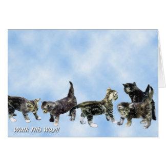 Tarjeta de los gatitos - linda