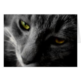 Tarjeta de los ojos de Raz