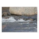 Tarjeta de los Rapids