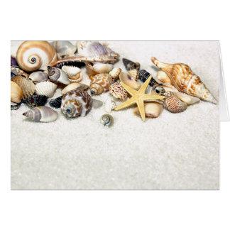 Tarjeta de los Seashells