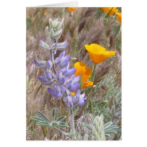 Tarjeta de los Wildflowers del día de madre