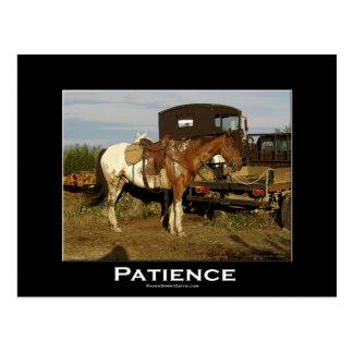 Tarjeta de motivación equina del arte del caballo  tarjeta postal