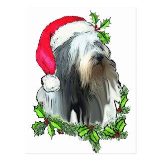 Tarjeta de Navidad barbuda del collie Tarjeta Postal