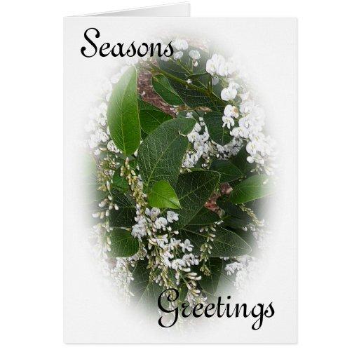Tarjeta de Navidad blanca del Hardenbergia