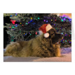 Tarjeta de Navidad brillante de Leonberger