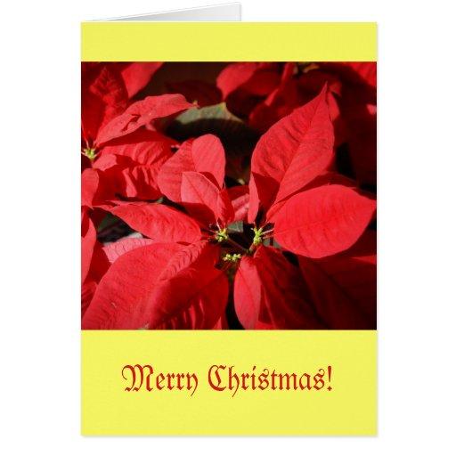 Tarjeta de Navidad con diseño del Poinsettia