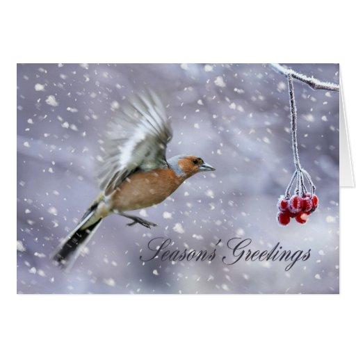 tarjeta de Navidad con el chaffinch que vuela a la