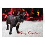 Tarjeta de Navidad de encargo de la foto del perro