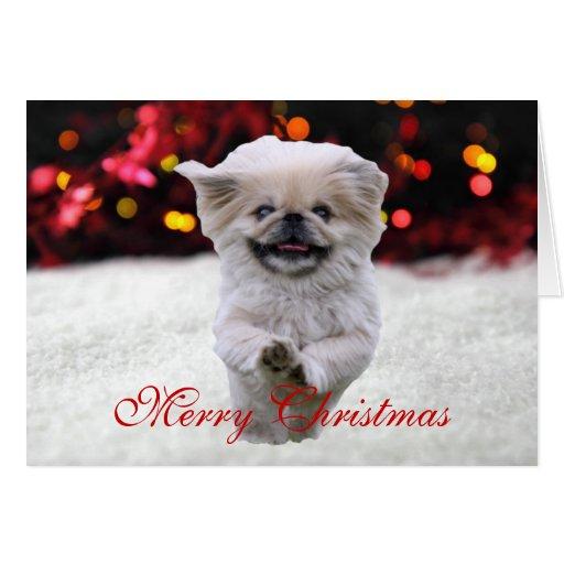 Tarjeta de Navidad de encargo de la foto linda del