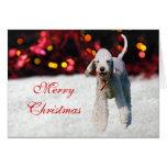 Tarjeta de Navidad de encargo linda del perro de B