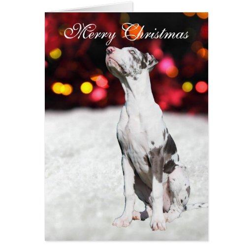 Tarjeta de Navidad de encargo linda del perro de p