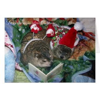 Tarjeta de Navidad de Groundhog
