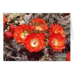 Tarjeta de Navidad de la flor del cactus
