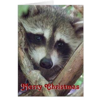 Tarjeta de Navidad de la foto del mapache del bebé