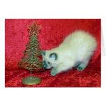 Tarjeta de Navidad de la sabana (gato del rescate)