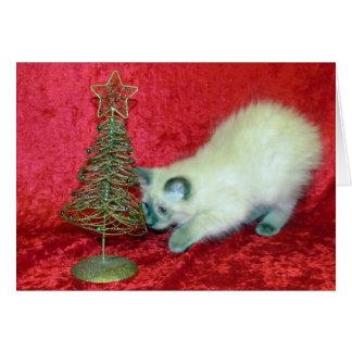 Tarjeta de Navidad de la sabana gato del rescate