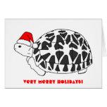 Tarjeta de Navidad de la tortuga de la estrella (g
