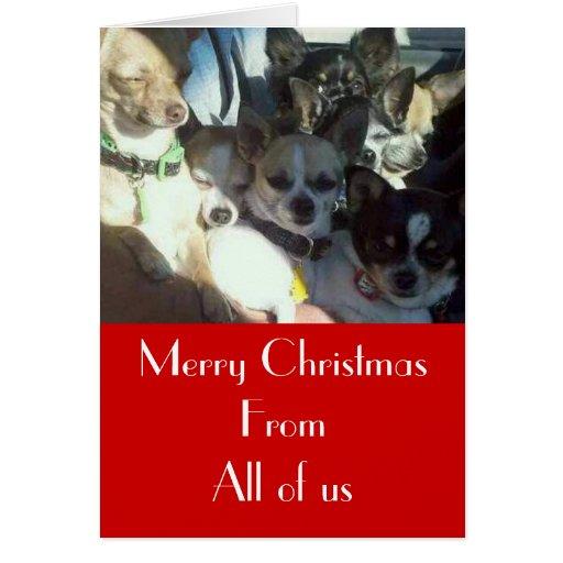 Tarjeta de Navidad de las chihuahuas