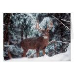 Tarjeta de Navidad de los ciervos
