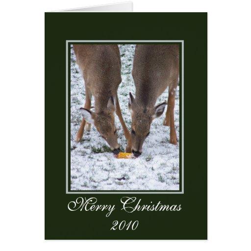 Tarjeta de Navidad de los ciervos del invierno