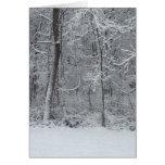 Tarjeta de Navidad de maderas Nevado 5x7