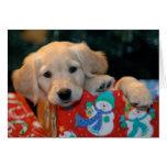 Tarjeta de Navidad de oro del presente del perrito