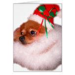 Tarjeta de Navidad de Pomeranian Santa