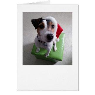Tarjeta de Navidad de Santa Jack Russell Terrier