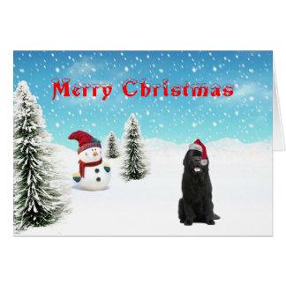 Tarjeta de Navidad de Terranova