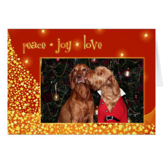 Tarjeta de Navidad de Vizsla del húngaro 012