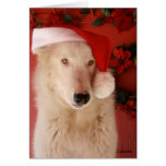 Tarjeta de Navidad de White Wolf