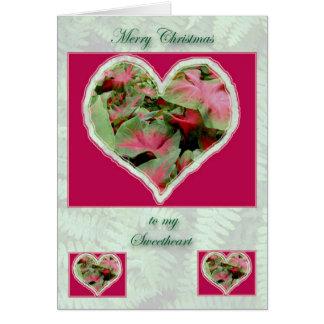 Tarjeta de Navidad del amor del Caladium